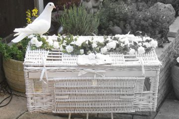 Flock of Wedding Doves