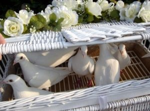 Funeral Doves