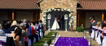 wedding doves in their displays